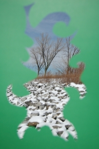 color and nature, med green snow rocks and trees, 2016